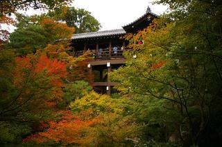 20061118-tofukuji-03.jpg