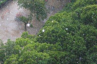 20070610-rain1.jpg