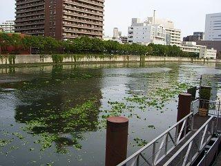 20071030-wl01.jpg