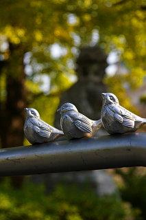 20071114-bird.jpg