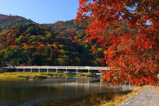 20071124-kyoto-togetukyo.jpg