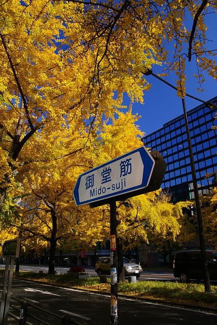 20071201-midousuji02.jpg