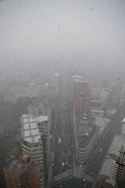 20080209-snow03.jpg
