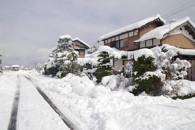 20080217-miyamura.jpg