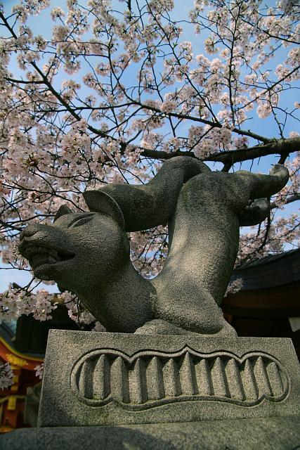 20080405-tosainari04.jpg