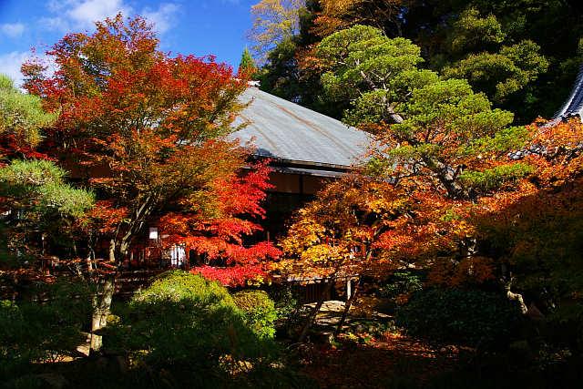 20081122-eikando03.jpg
