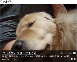 20081123-youtube2.jpg