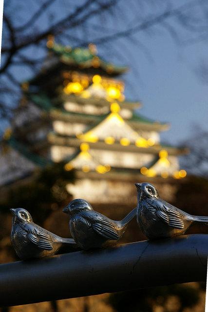 20090117-birds-castle.jpg