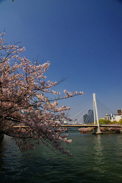 20090411-kawasakibashi.jpg