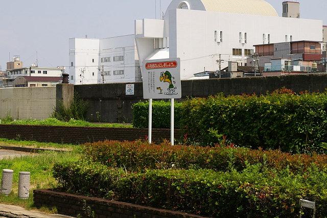 20090705-kawawokireini.jpg