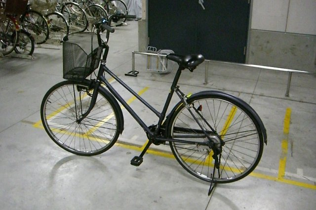 20100306-bicycle01.jpg
