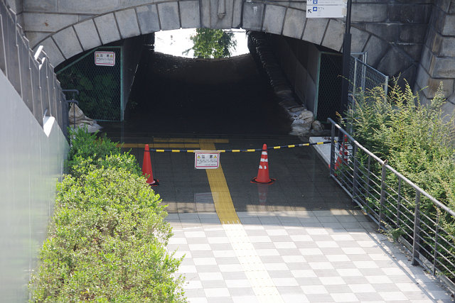 20100911-nakanoshima-flood2.jpg